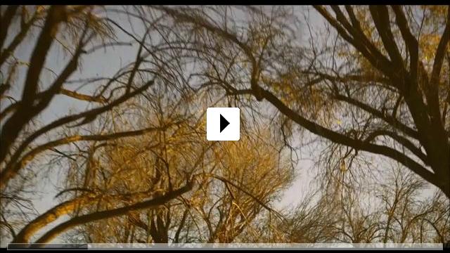 Zum Video: Palo Alto
