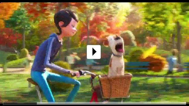 Zum Video: Pets