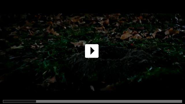 Zum Video: Stung