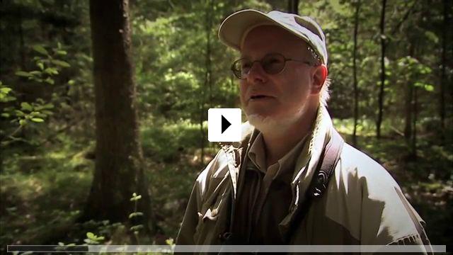 Zum Video: Birds & People - Ganz verrückt auf Vögel