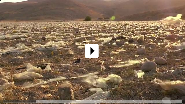 Zum Video: The Fading Valley