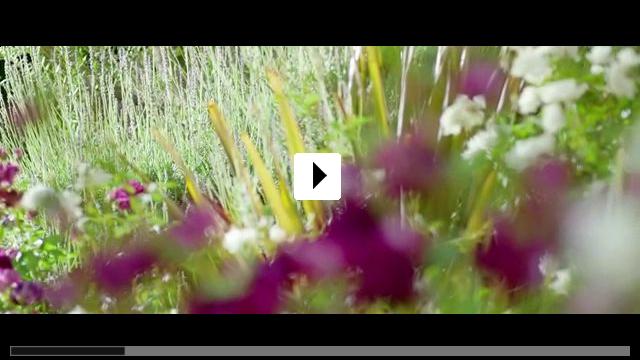 Zum Video: Reversion