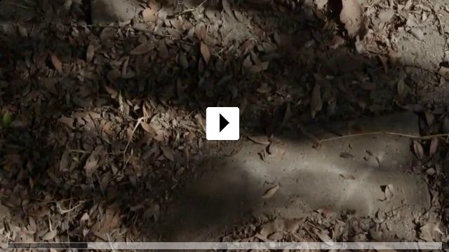 Zum Video: The Operator - Eine Marble Hornets Story