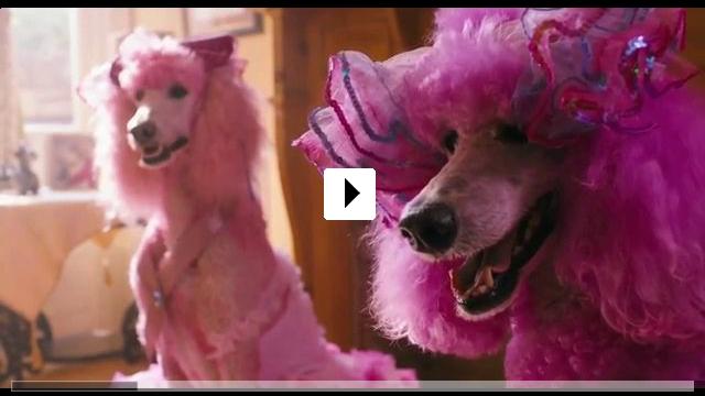 Zum Video: Pudsey - Ein tierisch cooler Held