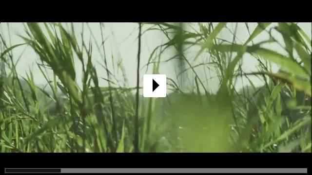 Zum Video: Der heimliche Freund