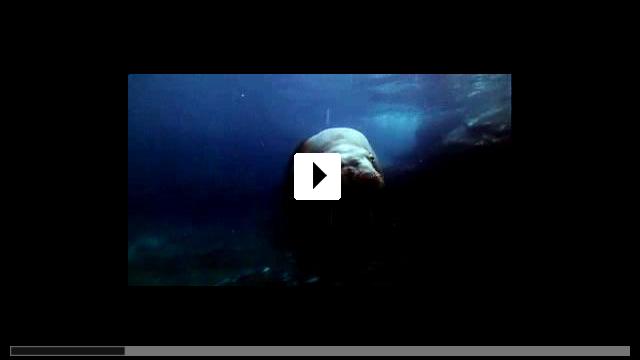 Zum Video: Verwünscht