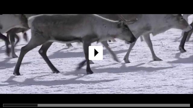Zum Video: Unsere Wildnis