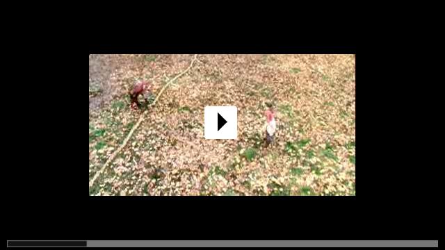 Zum Video: Die Geheimnisse der Spiderwicks
