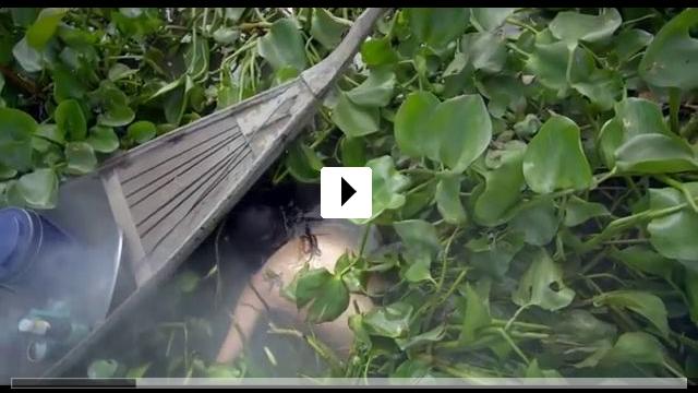 Zum Video: Zero Tolerance - Auge um Auge