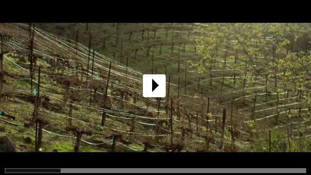 Zum Video: Visions
