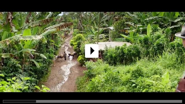 Zum Video: Vor der Morgenröte