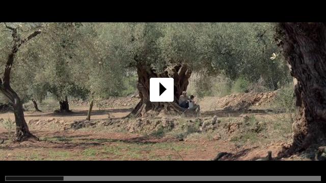 Zum Video: Der Olivenbaum