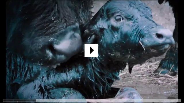 Zum Video: Bella e perduta - Eine Reise durch Italien