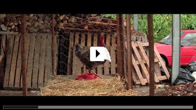 Zum Video: 1001 Nacht: Teil 1 - Der Ruhelose