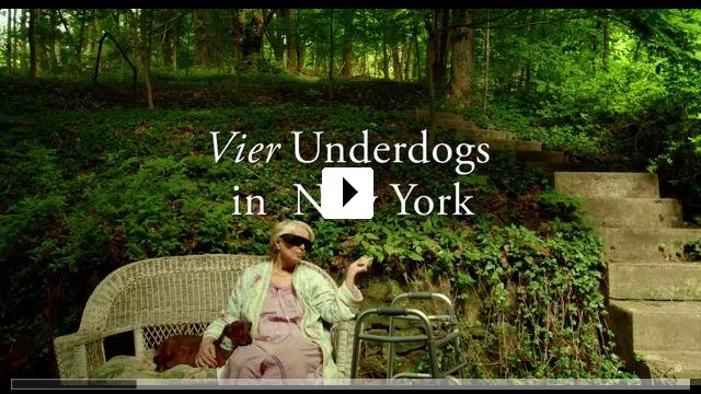 Zum Video: Wiener Dog