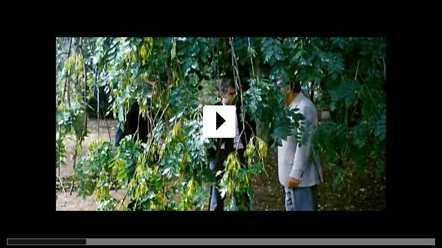 Zum Video: Cassandras Traum