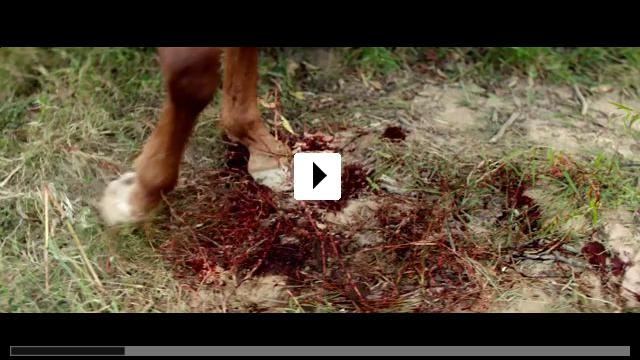 Zum Video: Das Duell