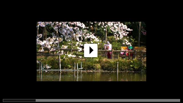 Zum Video: Kirschblüten