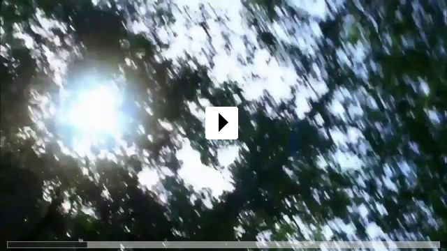 Zum Video: Schmetterling und Taucherglocke
