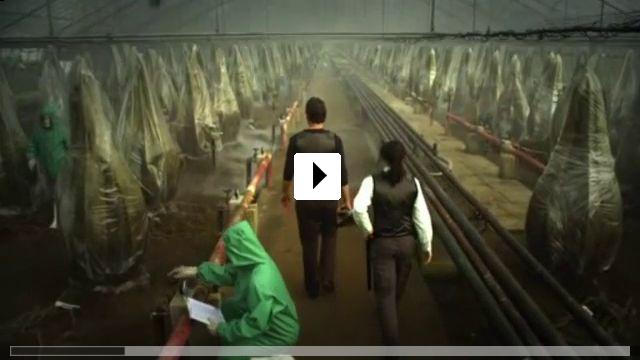 Zum Video: Die Triffids - Pflanzen des Schreckens