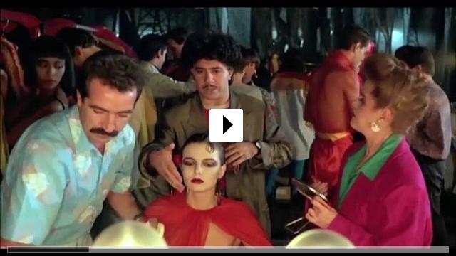 Zum Video: Matador