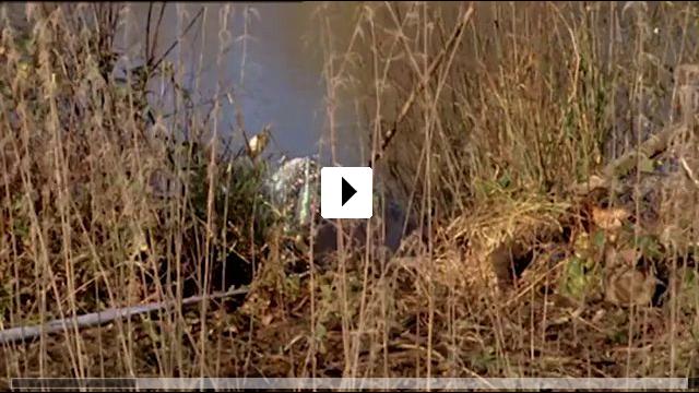 Zum Video: Inspector Barnaby