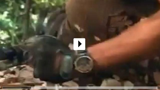 Zum Video: Sniper - Der Scharfschütze