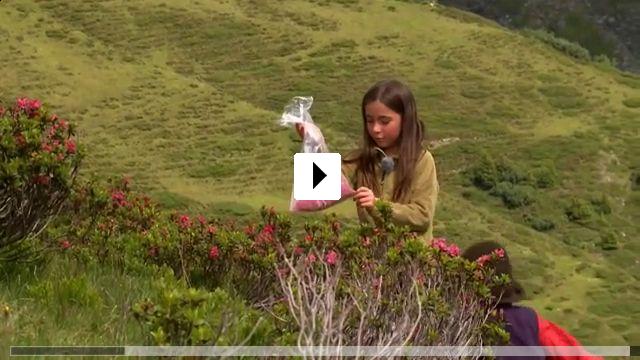 Zum Video: Kühe, Käse und 3 Kinder