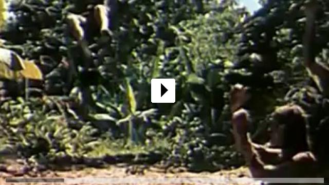 Zum Video: The Beach