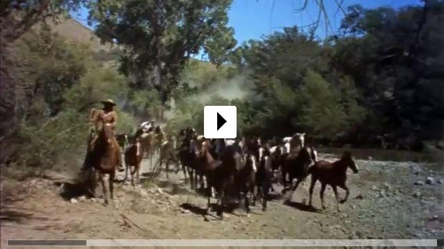 Zum Video: El Dorado