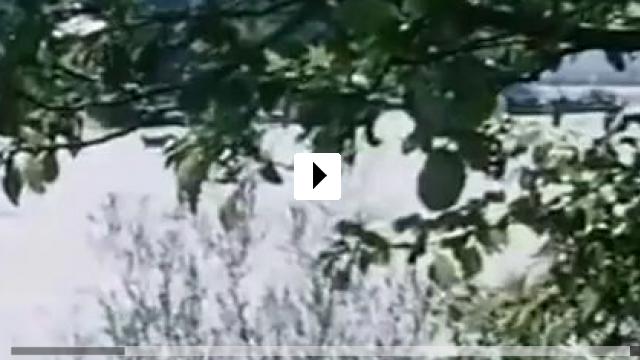 Zum Video: Mariandls Heimkehr