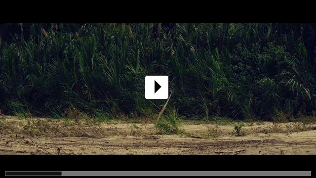 Zum Video: Die versunkene Stadt Z