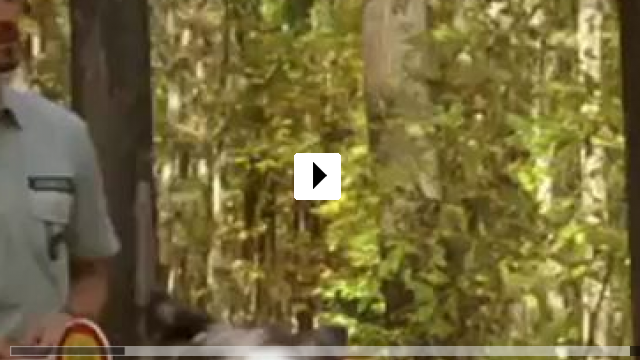 Zum Video: Unterwegs mit Elsa