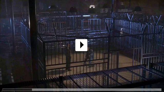Zum Video: Undisputed - Sieg ohne Ruhm