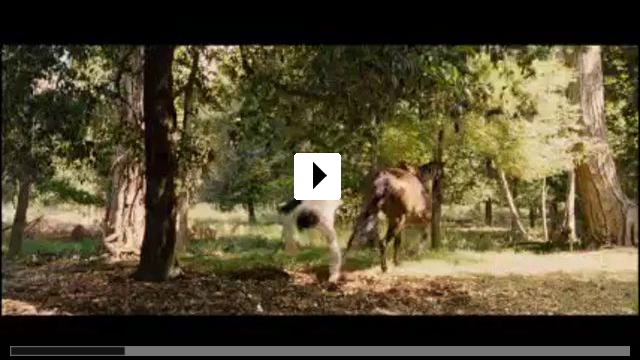 Zum Video: Kusswechsel 2 - Gegensätze ziehen sich aus