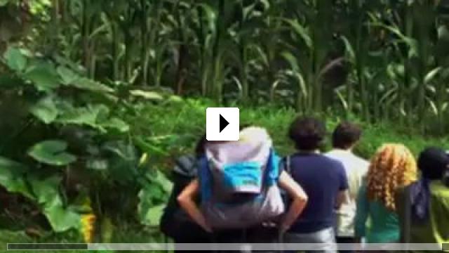 Zum Video: Island of Beasts