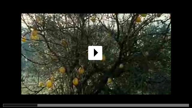 Zum Video: Lemon Tree