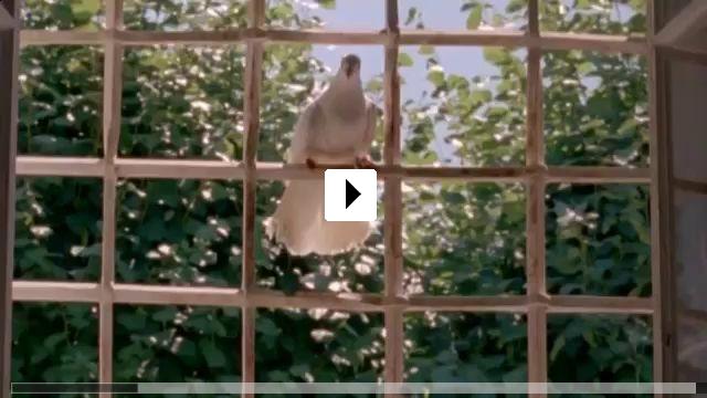 Zum Video: Aschenputtel