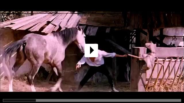 Zum Video: Die schwarze Tulpe