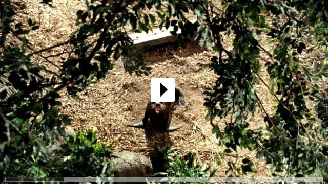 Zum Video: Die Insel der Abenteuer