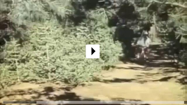Zum Video: Ein Goldfisch an der Leine