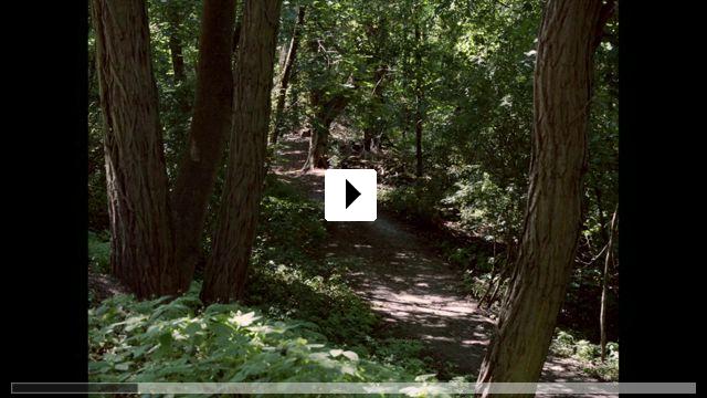 Zum Video: Der traumhafte Weg