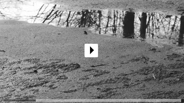 Zum Video: 6 Jahre, 7 Monate und 16 Tage - Die Morde des NSU