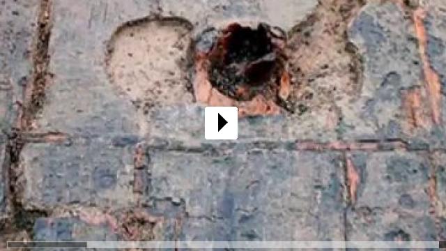 Zum Video: Spannende Geschichten aus der Bronzezeit - Must Farm