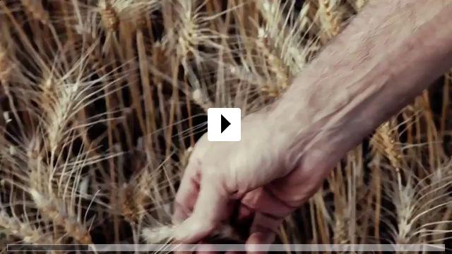 Zum Video: Das Grüne Gold