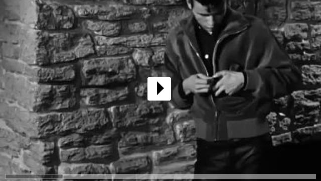 Zum Video: Die Halbstarken