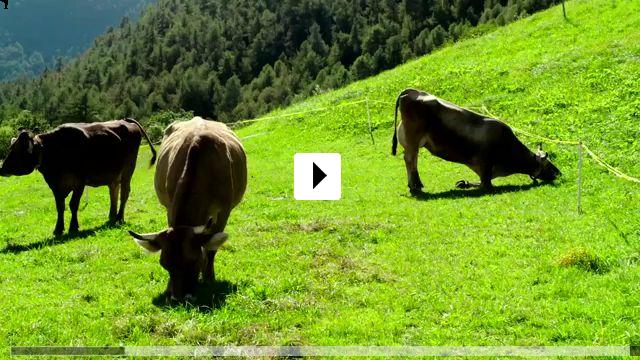 Zum Video: Das System Milch