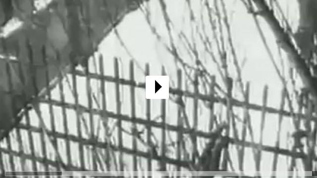 Zum Video: Der Gefangene von Alcatraz