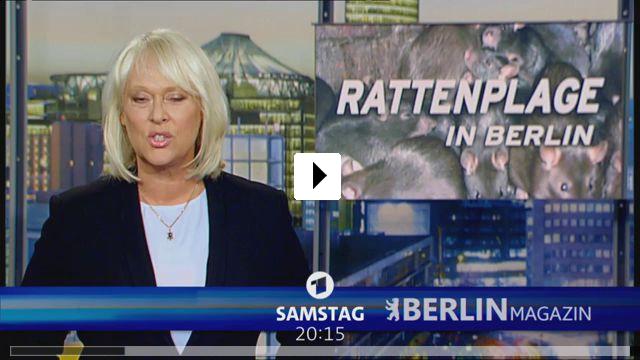 Zum Video: Der König von Berlin