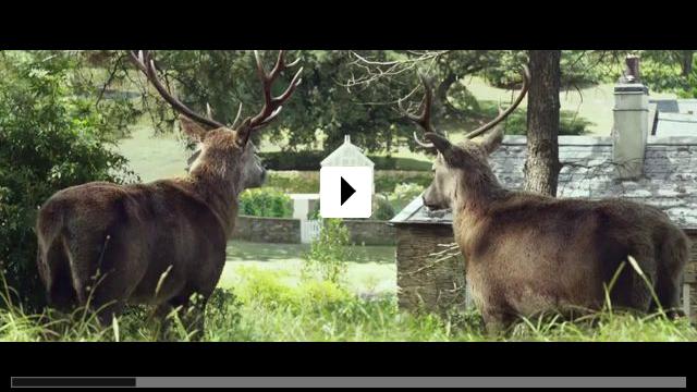 Zum Video: Peter Hase